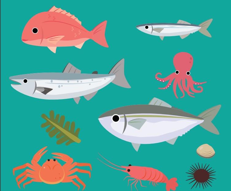 Guia de Bolsillo sobre las nuevas etiquetas de la UE para los productos de la pesca y de la acuicultura